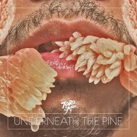 "TORO Y MOI, ""Underneath The Pine"""