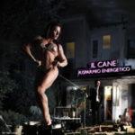"IL CANE, ""Risparmio Energetico"" (Matteite / Venus, 2012)"