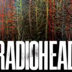 Radiohead, confermati i quattro concerti italiani