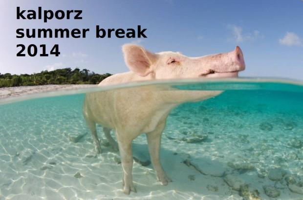 Pig-Beach-summer