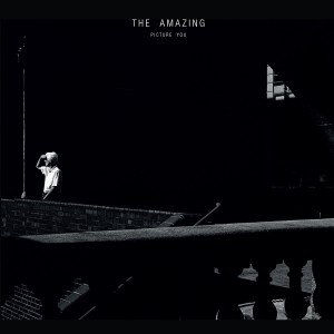THE_AMAZING-picture_you-1500x1500