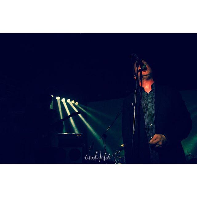 Protomartyr played in Torino last week pic by Corrado Iorfida @corradoio