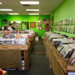 """""""Una cultura maschilista tossica"""": Burger Records costretta a chiudere"""