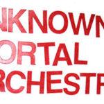 Unknown Mortal Orchestra: un ottimo soffritto