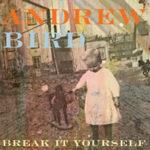 "ANDREW BIRD, ""Break It Yourself"" (Mom + Pop / Bella Union, 2012)"