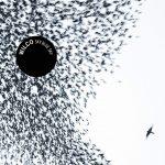 """WILCO, """"Sky Blue Sky"""" (Nonesuch, 2007)"""
